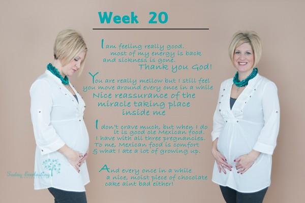 Zabel Maternity Collage 20wks web