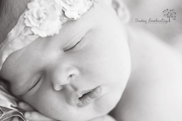 Aurora IL Newborn Photographer Cerrincione 2