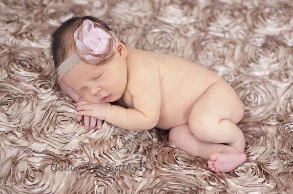 Aurora IL Newborn Photographer Cerrincione 20