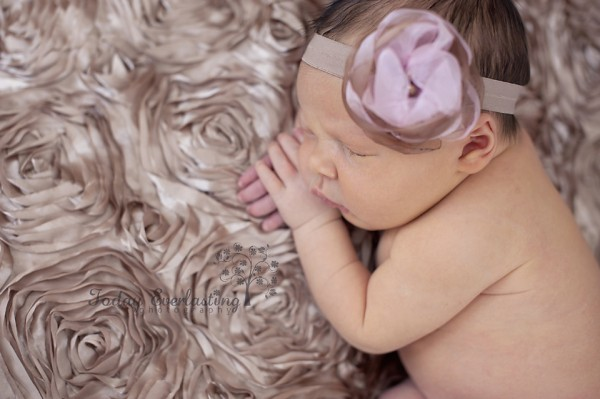 Aurora IL Newborn Photographer Cerrincione 28