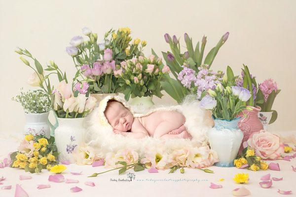 Flower Bed Beauty
